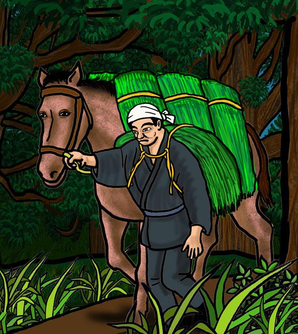 山で草を刈り、馬の背中に積み、自分も担いで山を下りた。これが夏の間は晴雨にかかわらず連日行われたのだ。