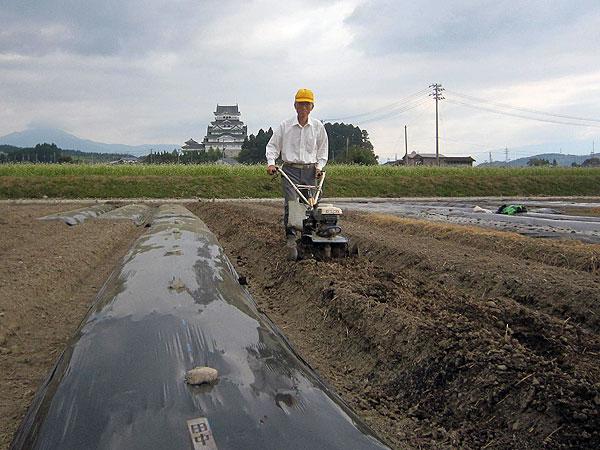 来年の収穫を期待して有機肥料をたっぷり入れた耕耘作業。(組合の集団農場)