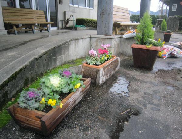 集会場の前のプランターに植え替えられた花。急に辺りが明るくなった。