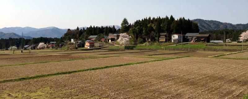 肥料を購入した帰りに通った赤尾地区。のどかな田舎の風景だ。