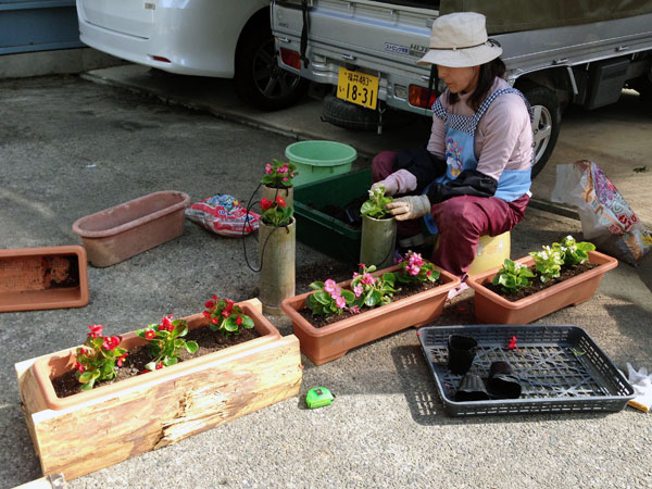自作の木製と竹製のプランターに3色のベコニアを植えた。その後、表通りに飾った。