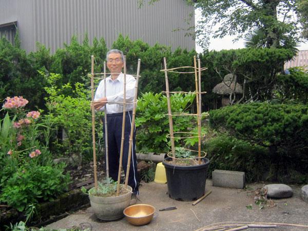 自宅の植木鉢でスイカを育てるために行燈仕立ての支柱を作った。