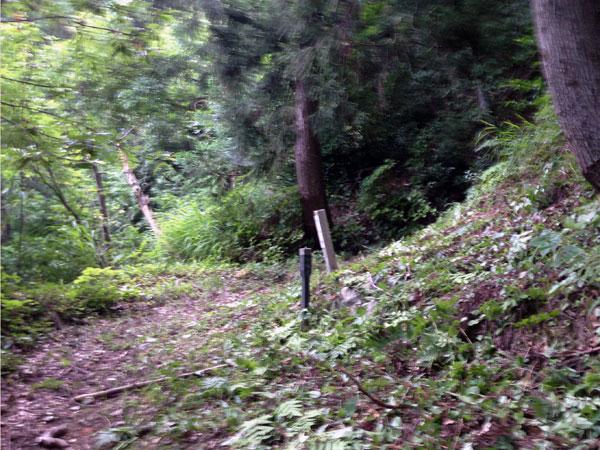 『中休み場』の標柱が残る大師山登山道の休み場。思い出の場所でもある。