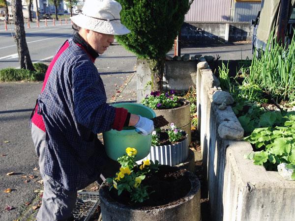 道路沿いのプランターに花を植える家内。