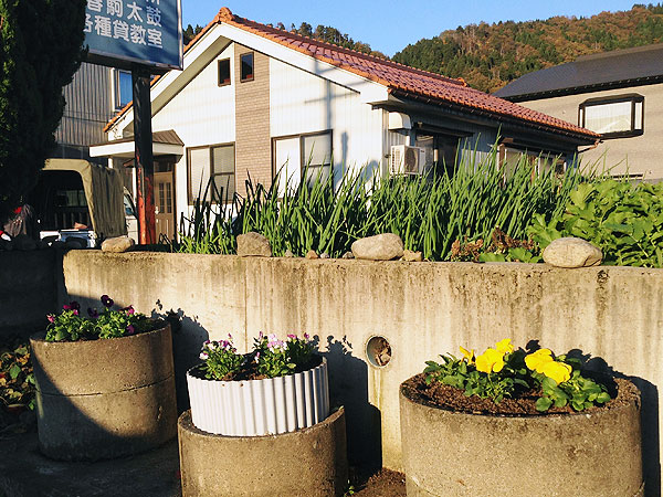 来年の春には、中央にチュウリップも彩りを添えるだろう。