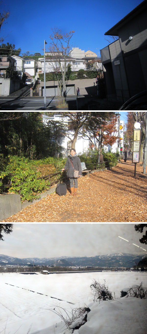 上:今日もまた抜けるような青空 中:歩道には落葉の絨毯 下:同じ日の勝山(えち鉄の車窓から)