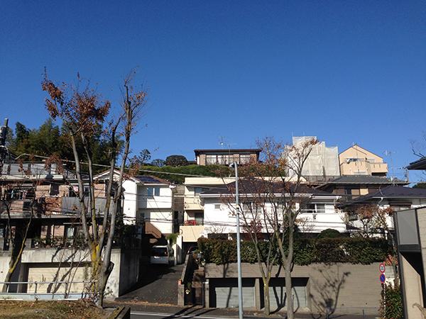 風は冷たいが今日も澄み切った青空。