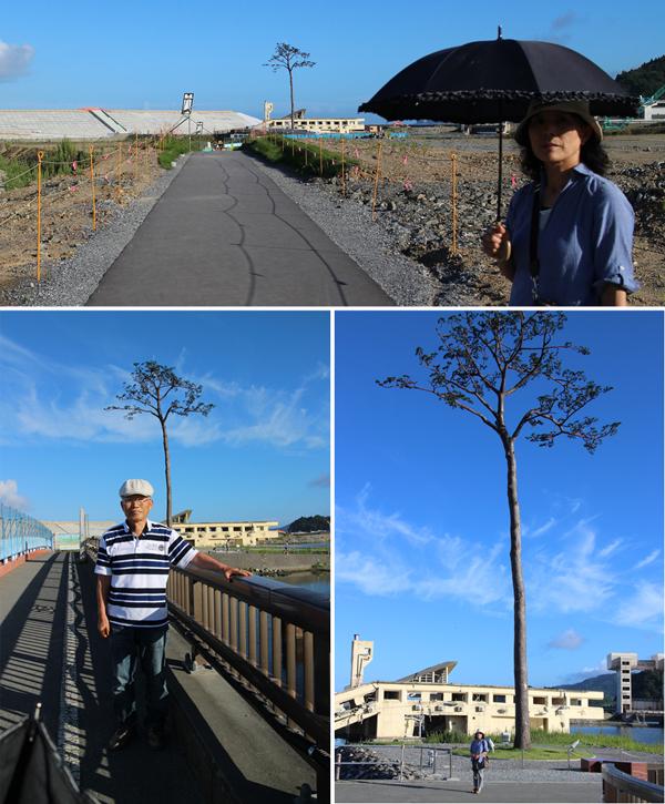 かつての名勝「高田 松原」は津波で跡形もなくなり、たった一本だけ残った「奇跡の一本松(モニュメント)」。